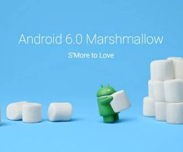 Android 6.0 Marshmallow bientôt sur le Oneplus One